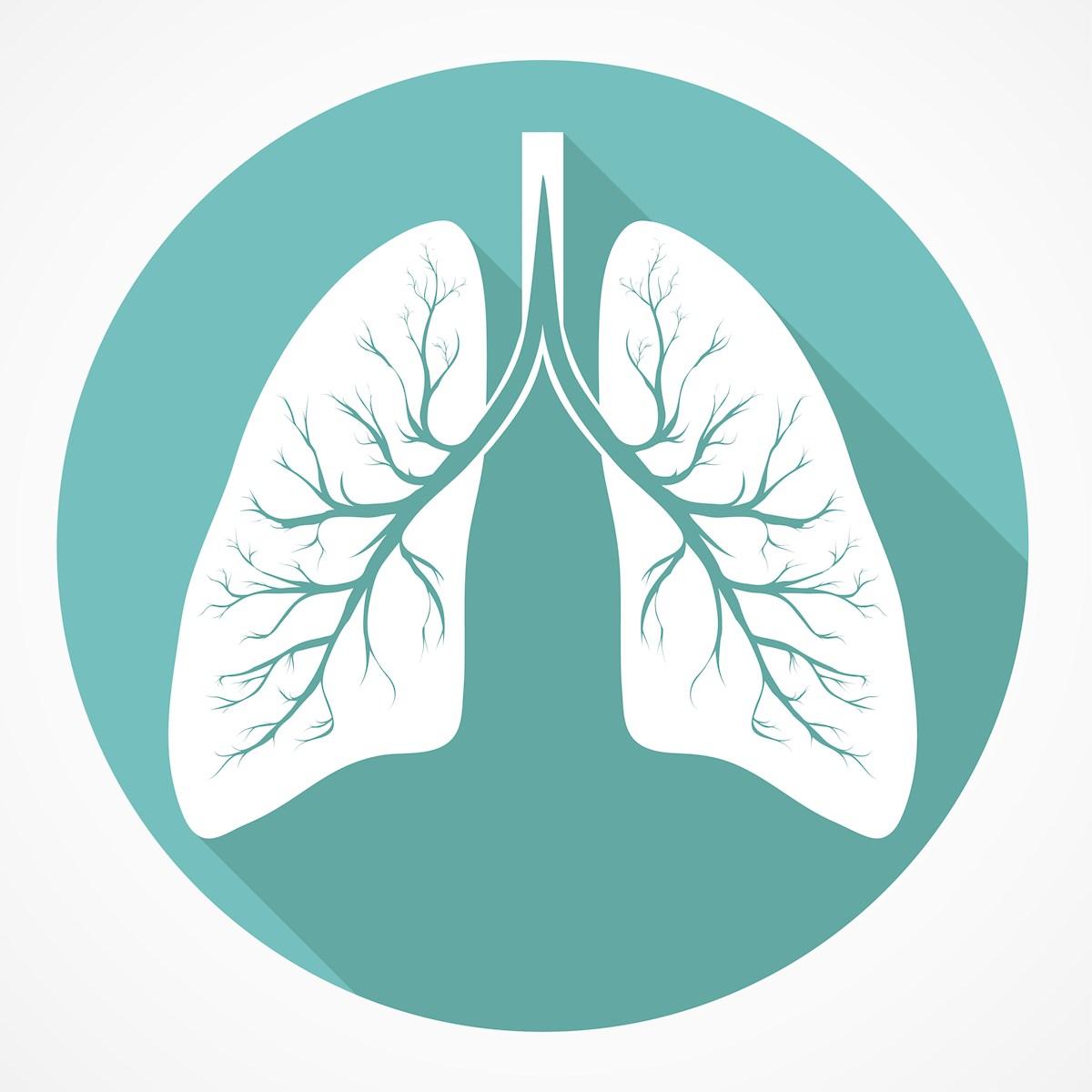 lungs-illus